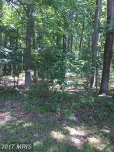 Photo of WHITE MARSH RD, TRAPPE, MD 21673 (MLS # TA9999983)