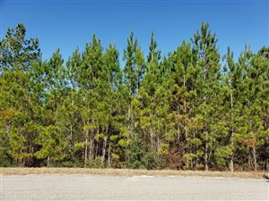 Photo of 5 Clear Lake Rd, Perkinston, MS 39573 (MLS # 343138)