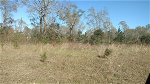Photo of 00 Enterprise Dr, Poplarville, MS 39470 (MLS # 331193)
