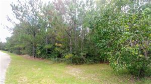 Photo of Lot 2 Skyline Drive, Poplarville, MS 39470 (MLS # 339241)