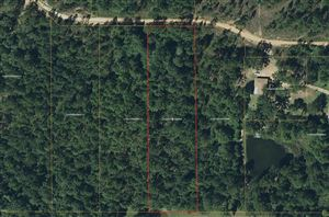 Photo of Lot 4 Flowers Ln, Poplarville, MS 39470 (MLS # 344705)