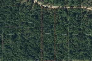 Photo of Lot 5 Flowers Ln, Poplarville, MS 39470 (MLS # 344708)