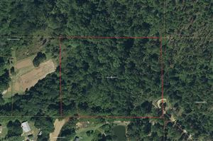 Photo of Lot 7 Flowers Ln, Poplarville, MS 39470 (MLS # 344758)