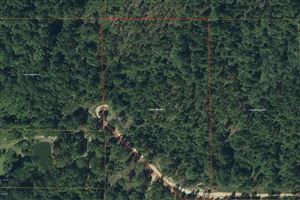 Photo of Lot 8 Flowers Ln, Poplarville, MS 39470 (MLS # 344759)
