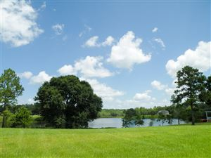 Photo of 28 G Buckley Ln, Lucedale, MS 39452 (MLS # 350786)