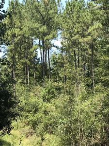 Photo of 0 Cressionnie Rd, Carriere, MS 39426 (MLS # 352998)