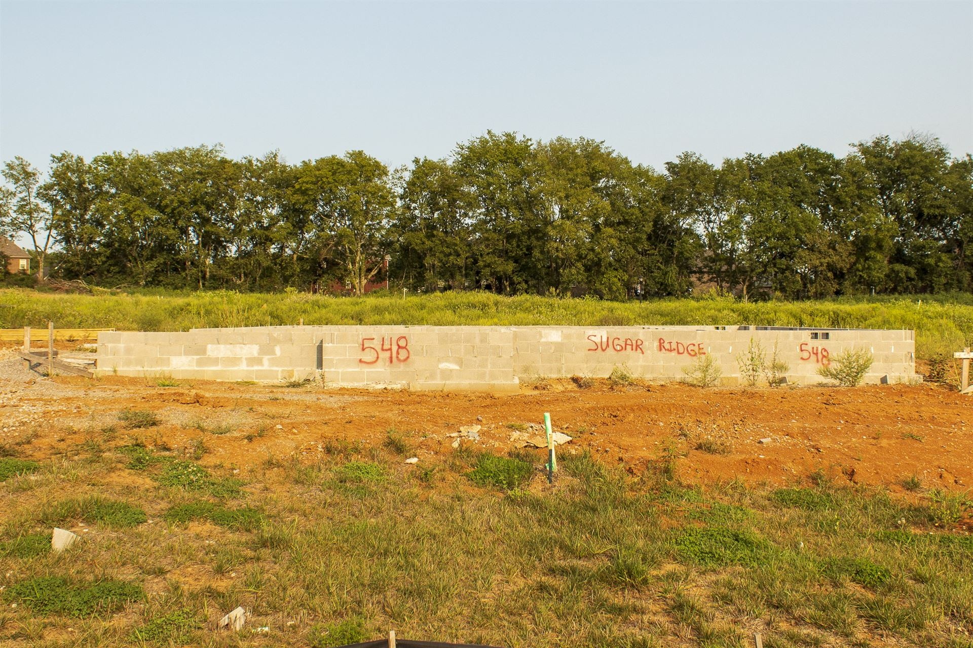 Photo of 9033 Safe Haven Place Lot 548, Spring Hill, TN 37174 (MLS # 2190030)