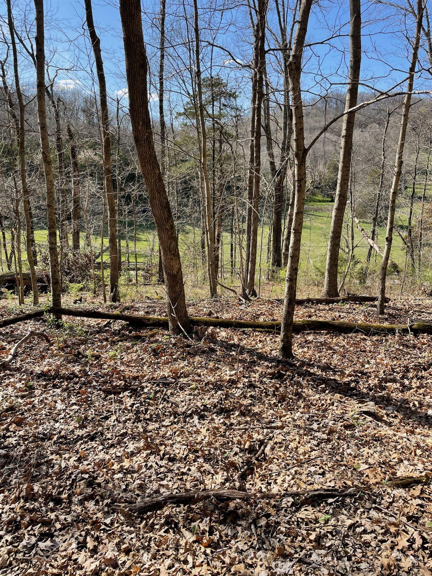 Photo of 2057 Hillsboro, Franklin, TN 37069 (MLS # 2225051)