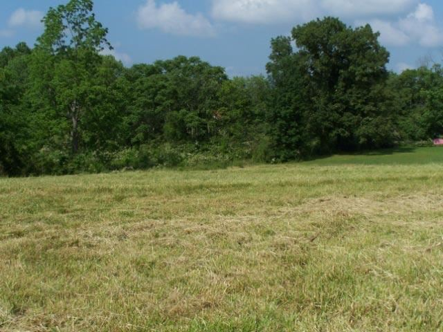 Photo of 426 West Broad, Highway 70, Smithville, TN 37166 (MLS # 1840056)