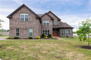 Photo of 223 Sparrow Gap Dr, LaVergne, TN 37086 (MLS # 2050084)