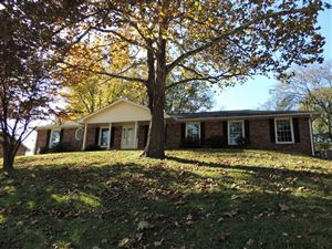Photo of 156 Vulco Dr, Hendersonville, TN 37075 (MLS # 2099092)