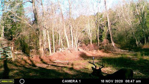 Tiny photo for 2187 Scribner Mill Rd, Culleoka, TN 38451 (MLS # 2220124)