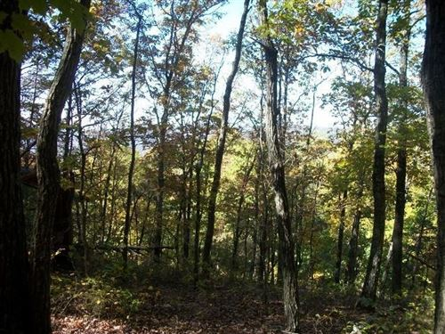 Photo of 0 SR 50, Altamont, TN 37301 (MLS # 2222193)