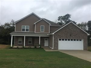 Photo of 913 Beverly Ct, Spring Hill, TN 37174 (MLS # 1994196)