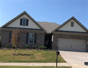 Photo of 1314 Sylvan Park, Lot 343, Spring Hill, TN 37174 (MLS # 2042202)