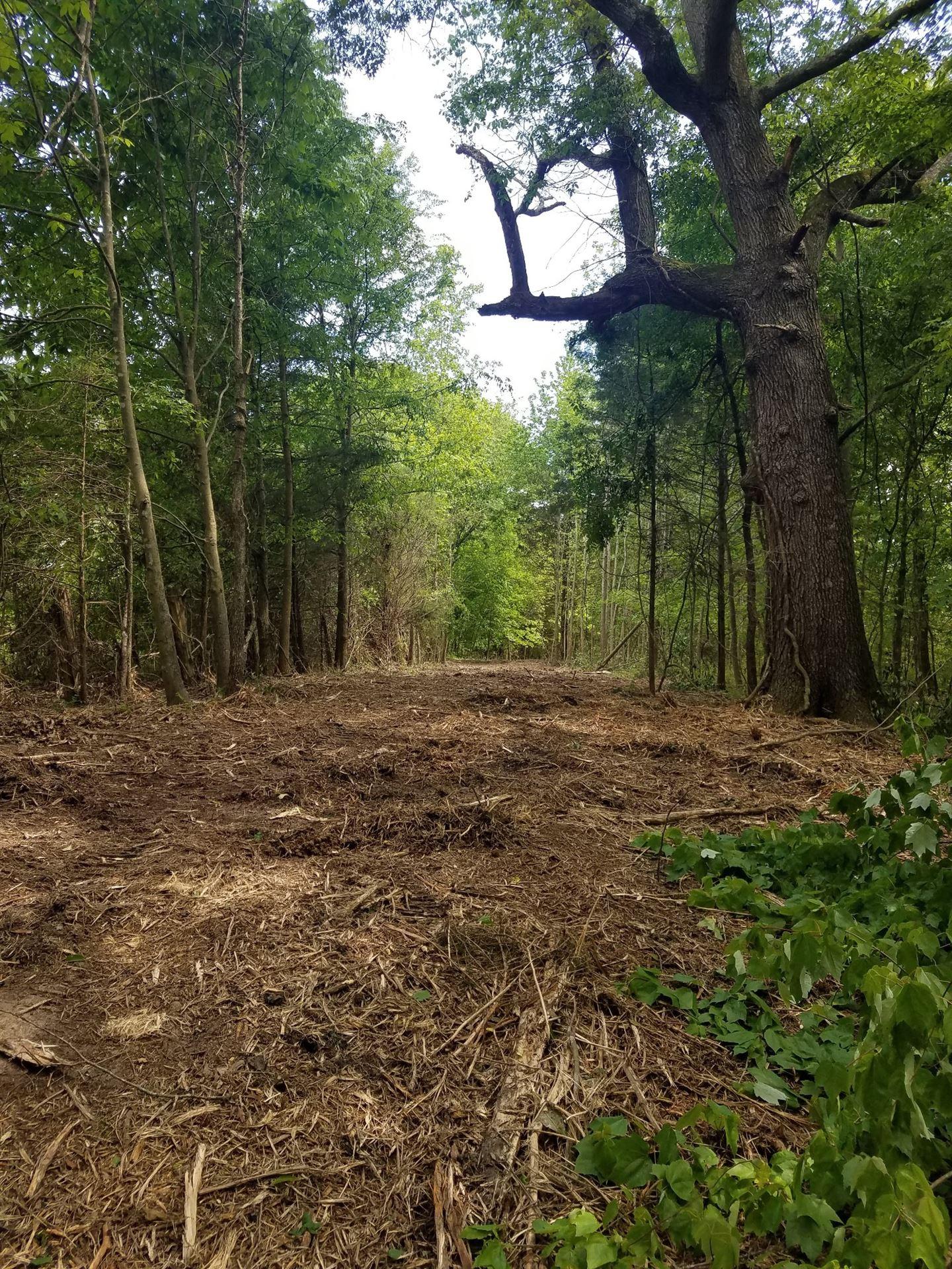 Photo of 4 Maxey Road, Cedar Hill, TN 37032 (MLS # 2153202)