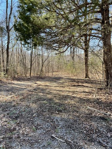 Photo of 0 Yellow Flats Rd, Spencer, TN 38585 (MLS # 2225203)