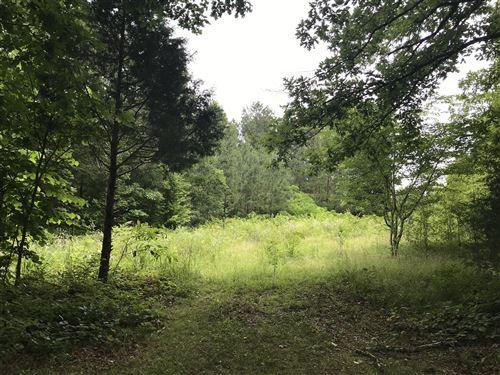 Photo of 5855 Green Chapel Rd, Franklin, TN 37064 (MLS # 2052204)