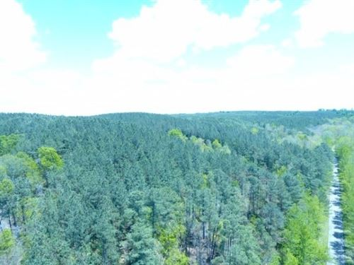 Photo of 0N Sinking Creek Rd, Hohenwald, TN 38462 (MLS # 2222219)