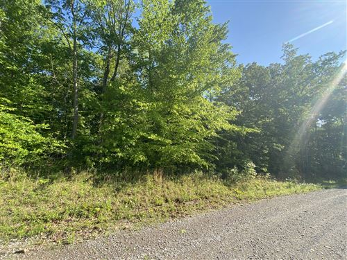 Photo of 1 Hilltop Road (Tract 1), Cumberland Furnace, TN 37051 (MLS # 2252239)