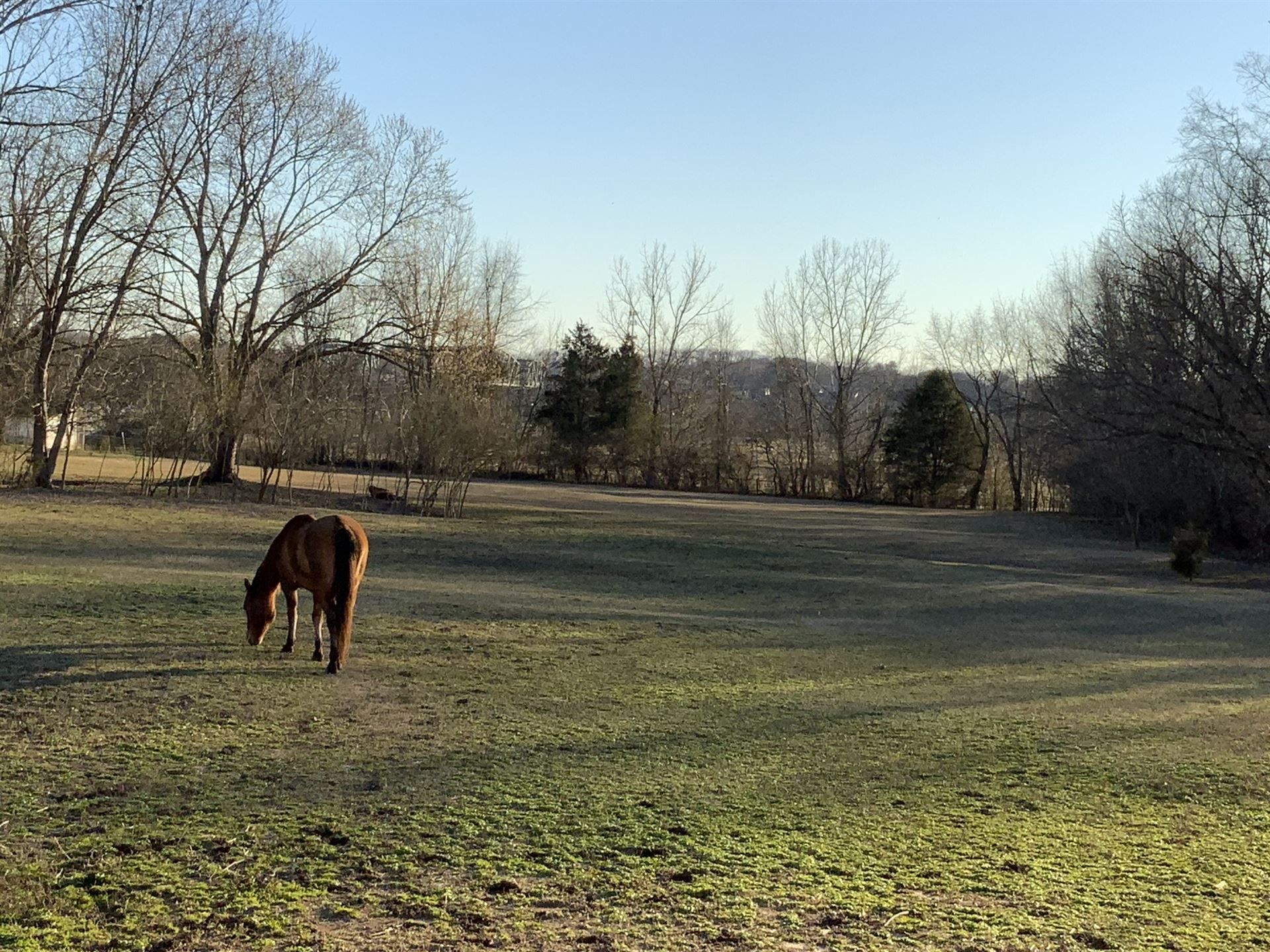 102 Scenic View Rd, Old Hickory, TN 37138 - MLS#: 2239254