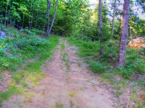 Photo of 19 .45ac Bear Hollow Ln, Livingston, TN 38570 (MLS # 2202256)