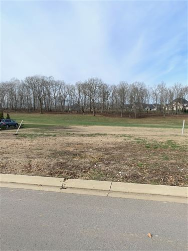 Photo of 8224 Heirloom Blvd, College Grove, TN 37046 (MLS # 2115263)