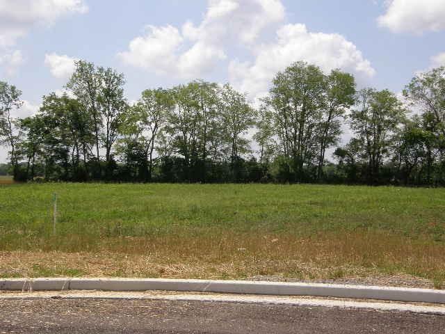 Photo of 7 Mayoral Ct, Murfreesboro, TN 37127 (MLS # 1208263)