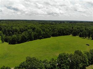Photo of 2 Younger Creek Rd., Primm Springs, TN 38476 (MLS # 2052272)