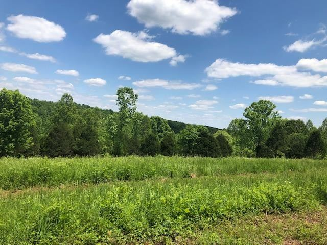 Photo of 2 Old Hwy 96, Franklin, TN 37064 (MLS # 2156273)