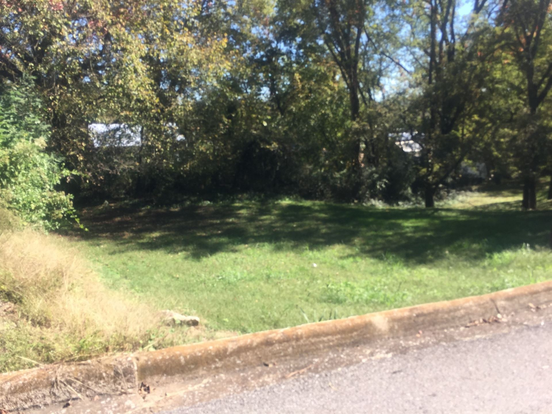 Photo of 0 McGrew St, Pulaski, TN 38478 (MLS # 2198277)