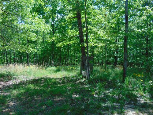 Photo of 139 Lost Arrowhead Rd, Summertown, TN 38483 (MLS # 2255283)