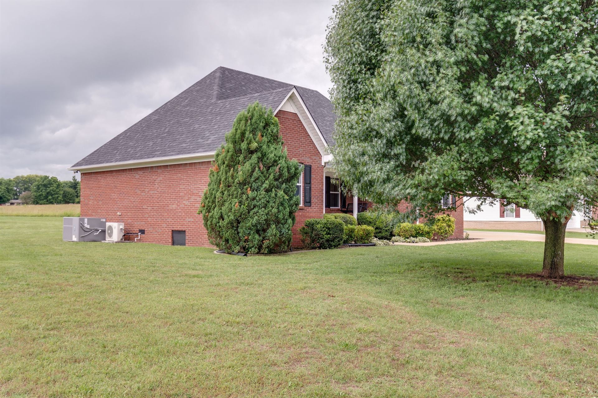 Photo of 403 Brookside Dr, Mount Pleasant, TN 38474 (MLS # 2169303)