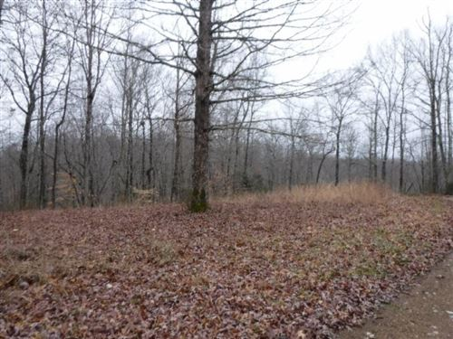 Photo of 9 Backwoods Trails Lane, Celina, TN 38551 (MLS # 2013337)