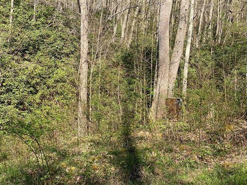 Photo of 7 Skyler Ln, Byrdstown, TN 38549 (MLS # 2262386)