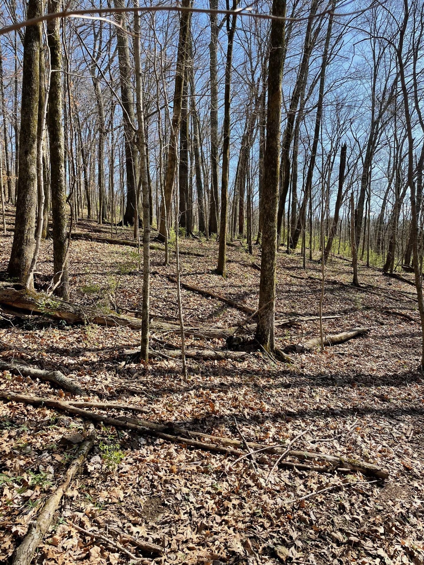 Photo of 2057 Hillsboro, Franklin, TN 37069 (MLS # 2242412)
