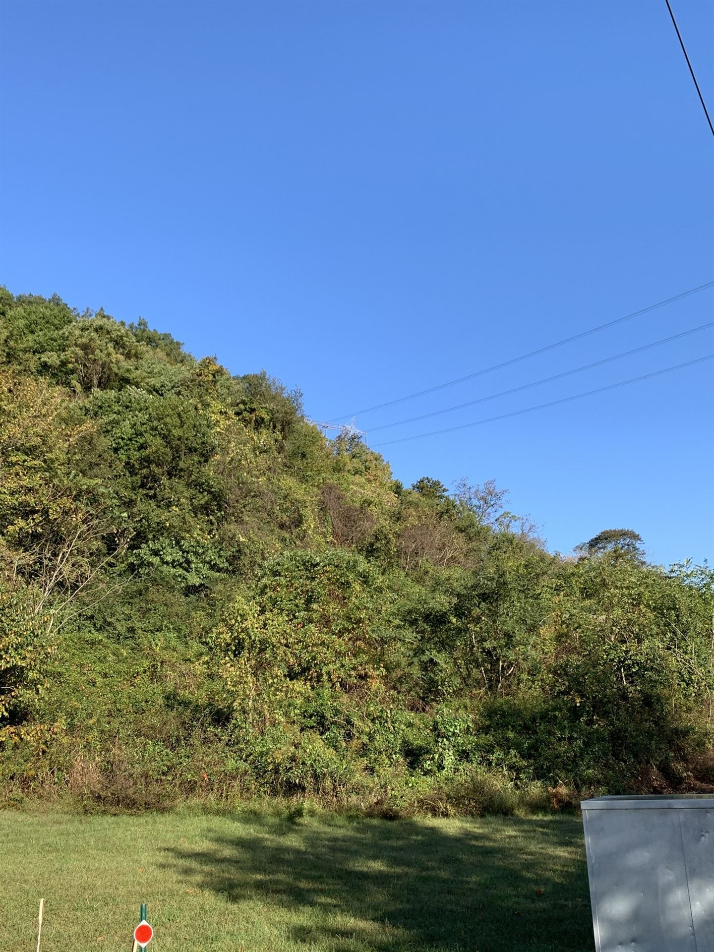Photo of 1357 Holly Tree Gap Rd N, Brentwood, TN 37027 (MLS # 2222423)