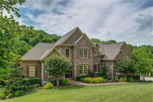 Photo of 398 The Lady Of The Lake Ln, Franklin, TN 37067 (MLS # 2083426)