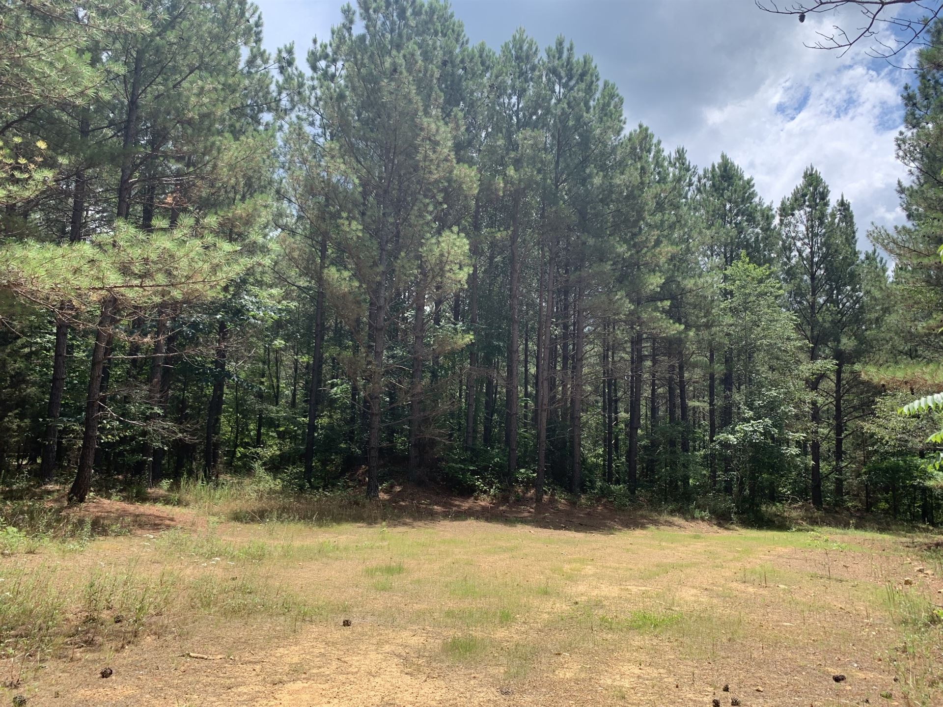 0 Hickory Trace Rd, Lyles, TN 37098 - MLS#: 2269426
