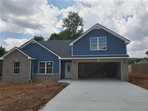 Photo of 4 Kingstons Cove, Clarksville, TN 37042 (MLS # 2051427)