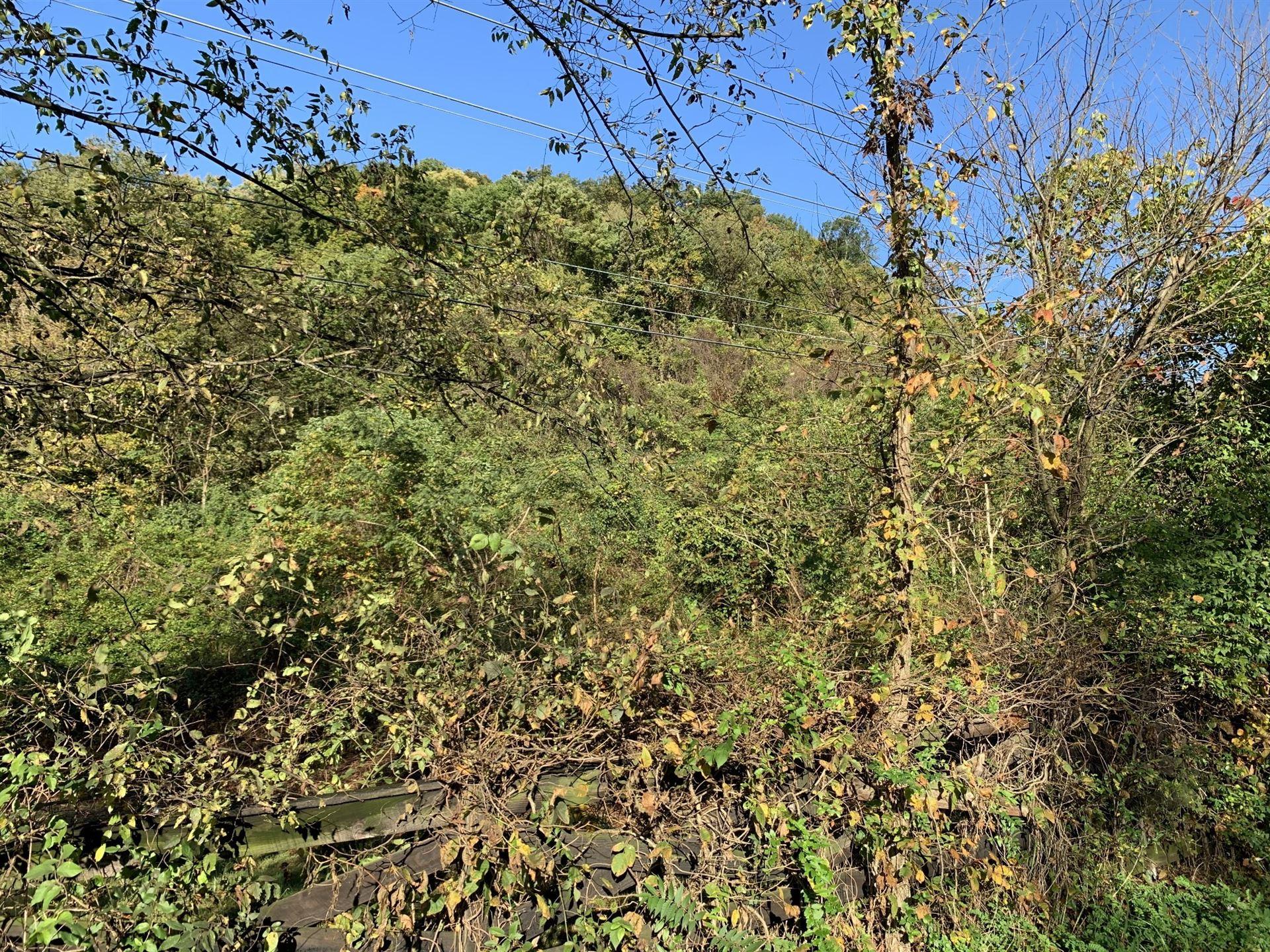 Photo of 1353 Holly Tree Gap Rd N, Brentwood, TN 37027 (MLS # 2222427)