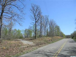 Photo of 0 Halls Creek Rd, Waverly, TN 37185 (MLS # 2031453)
