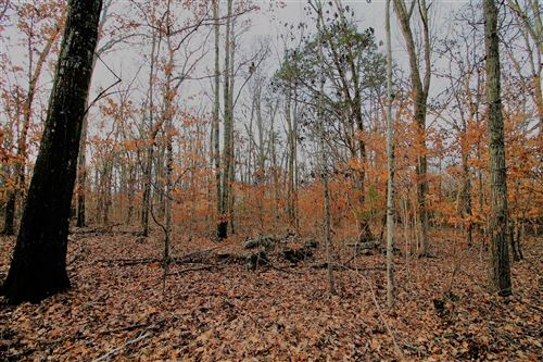 Photo of 9913 Maupin Rd, Brentwood, TN 37027 (MLS # 2147460)