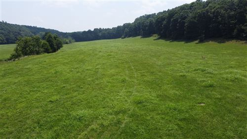 Photo of 0 Centerville Hwy, Hohenwald, TN 38462 (MLS # 2275469)