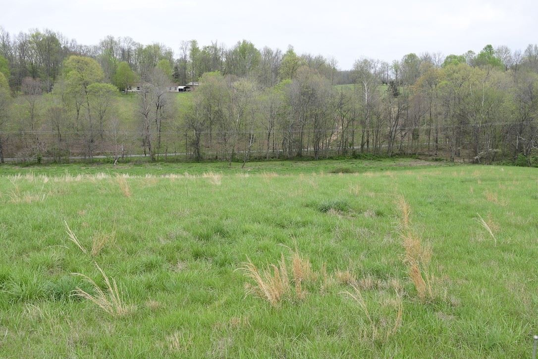 0 Rogues Fork Rd., Bethpage, TN 37022 - MLS#: 2177469