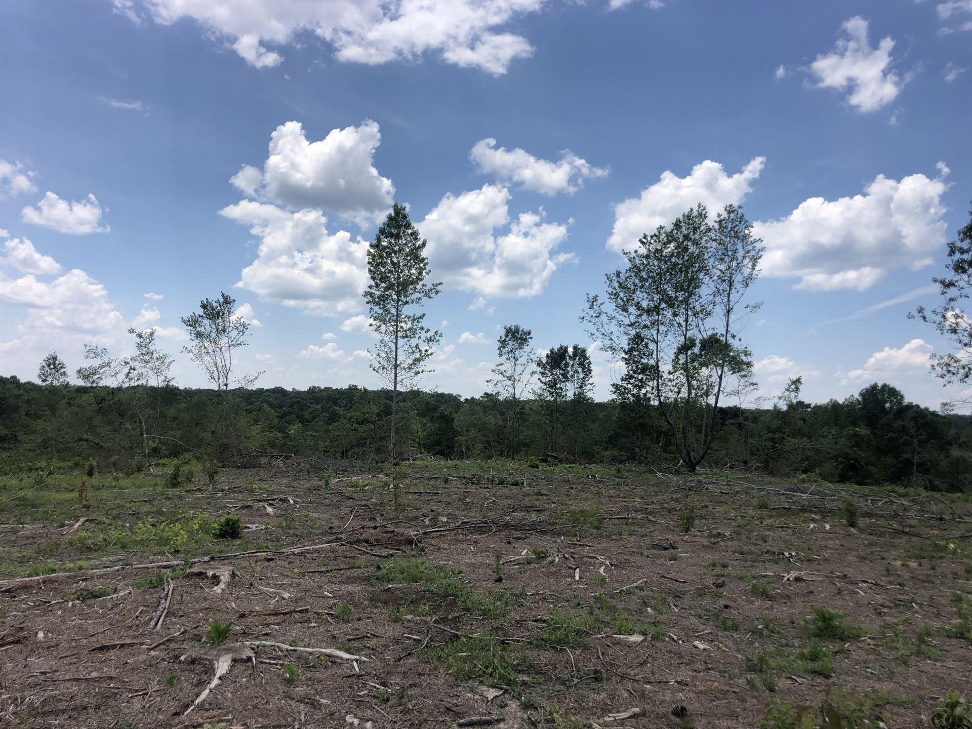Photo of 0 Buck Branch Rd, Lawrenceburg, TN 38464 (MLS # 2162482)