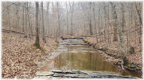 Photo of 8364 Old Pond Creek Rd, Pegram, TN 37143 (MLS # 1899485)