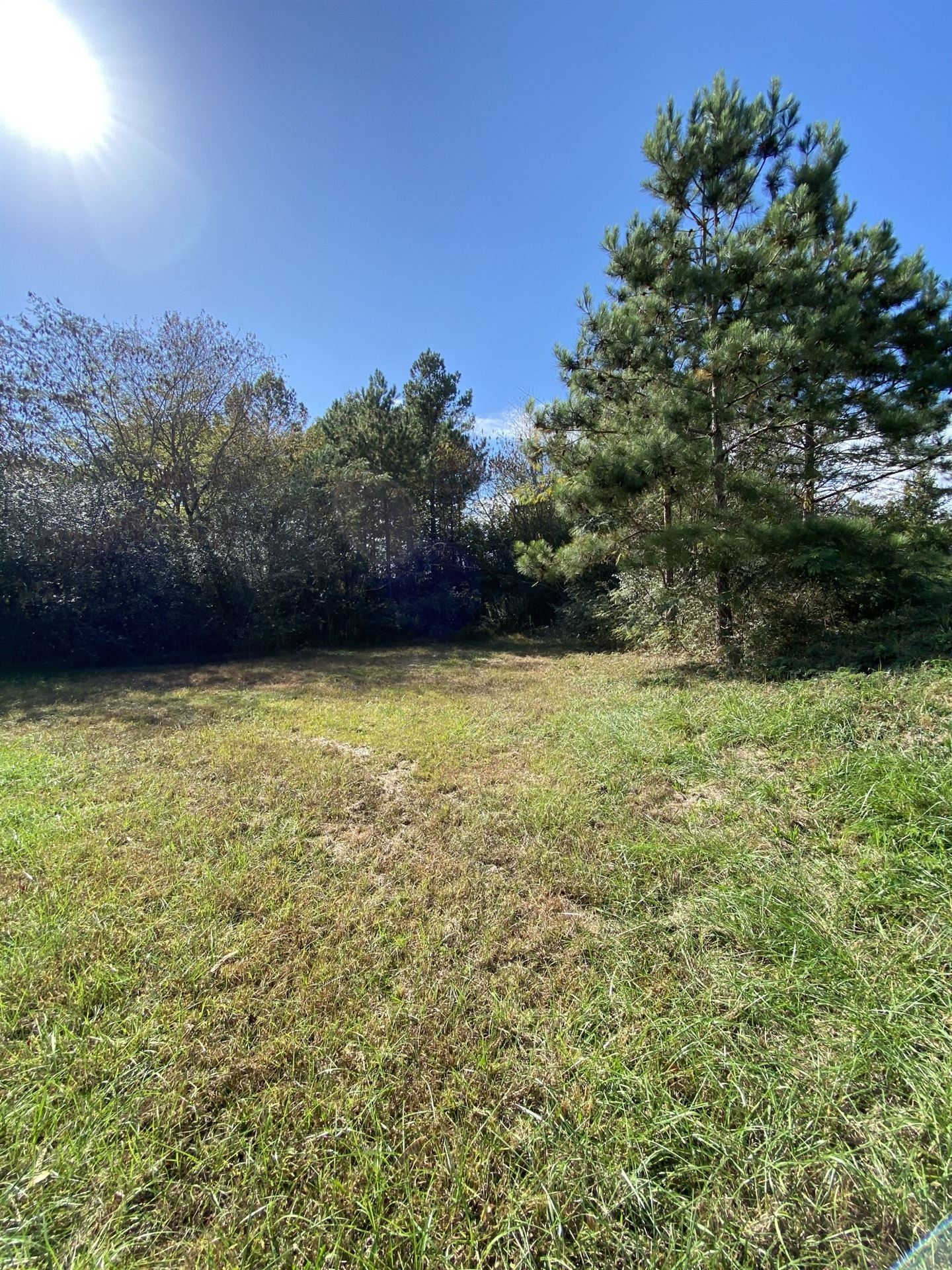 Photo of 0 Highway 43 South, Leoma, TN 38468 (MLS # 2202487)