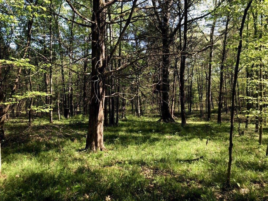 Photo of 0 Flat Creek Rd, Spring Hill, TN 37174 (MLS # 2141526)