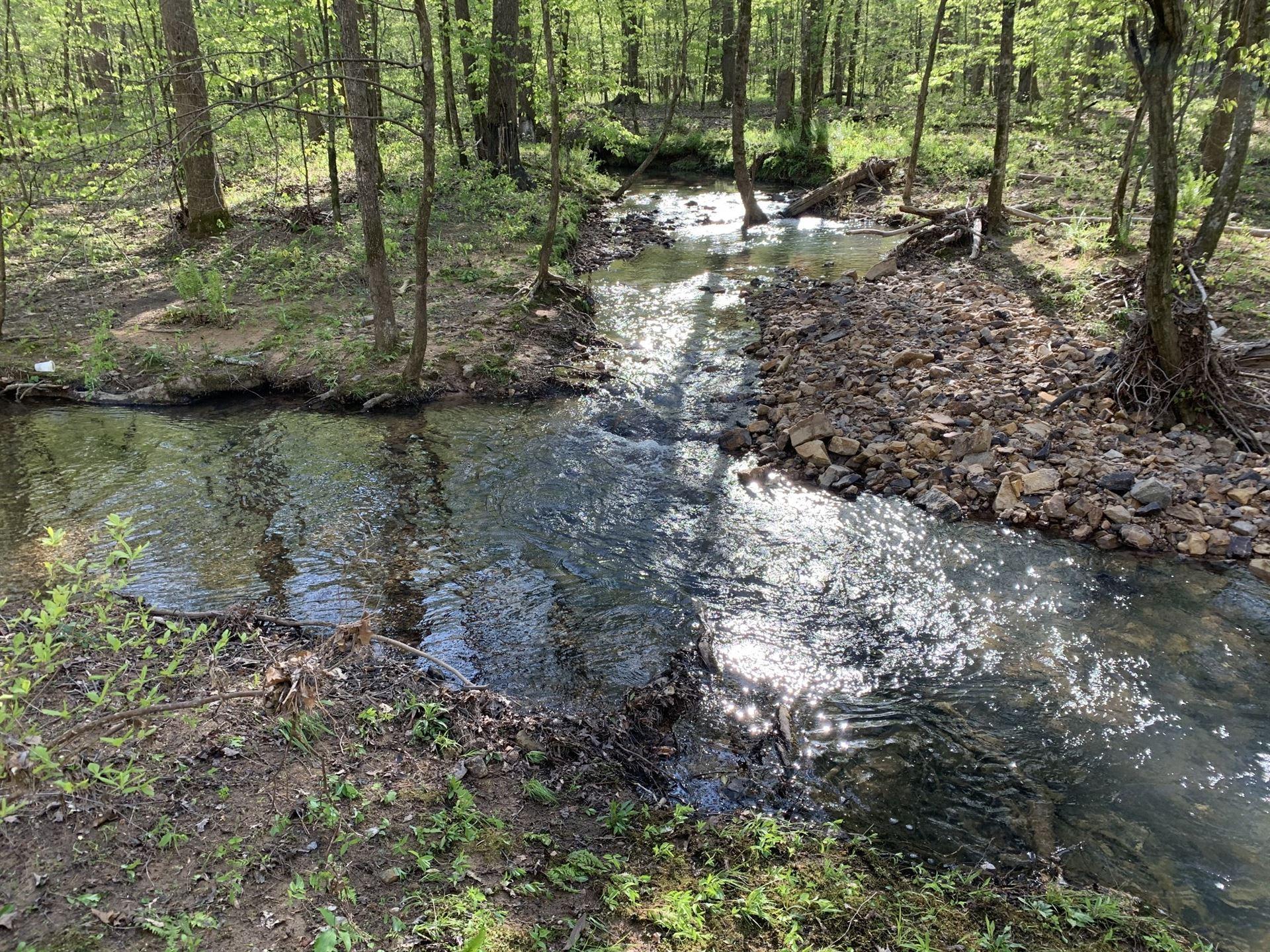 Photo of 460 Brush Creek Road, Lawrenceburg, TN 38464 (MLS # 2152537)